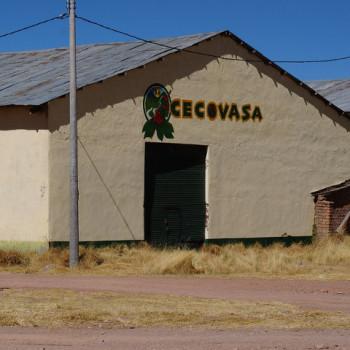 CECOVASA1